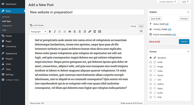 WordPress: writing a blog post.